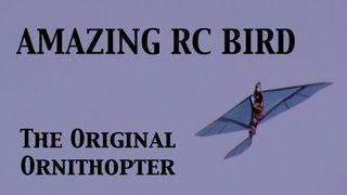 Amazing Robot Bird. Original RC Ornithopter!