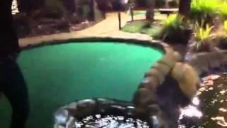 Greatest putt-putt shot of all time