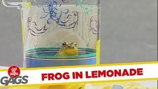 Frog in Lemonade - Hidden Camera Prank