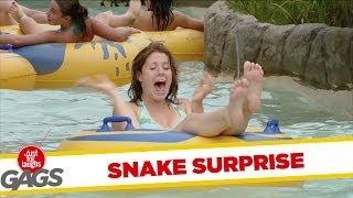 Snake Surprise - crazy prank