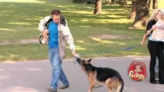 Dog Eat Dog - hidden camera joke