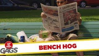 Bench Hog - hidden camera