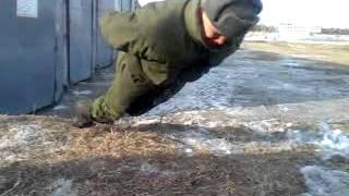 Russian Soldier - Push Ups Expert