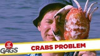Crabs Problem - Funny Prank