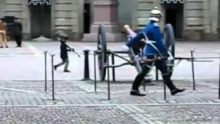 Boy mirrors Swedish guard