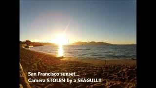 GoPro STOLEN by a SEAGULL - Unique San Francisco sunset...
