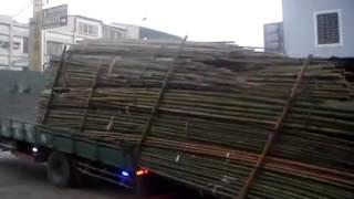 Unloading a truck Taiwan style